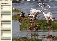 Wildes Leben in Botswana (Wandkalender 2019 DIN A3 quer) - Produktdetailbild 10