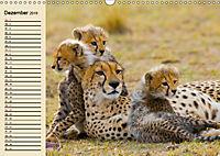 Wildes Leben in Botswana (Wandkalender 2019 DIN A3 quer) - Produktdetailbild 12