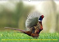 Wildes NRW - Beeindruckende Tierwelt (Wandkalender 2019 DIN A3 quer) - Produktdetailbild 7