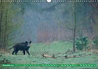 Wildes NRW - Beeindruckende Tierwelt (Wandkalender 2019 DIN A3 quer) - Produktdetailbild 11