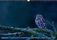 Wildes NRW - Beeindruckende Tierwelt (Wandkalender 2019 DIN A3 quer) - Produktdetailbild 12