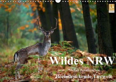 Wildes NRW - Beeindruckende Tierwelt (Wandkalender 2019 DIN A3 quer), Stefan Rosengarten