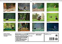 Wildes NRW - Beeindruckende Tierwelt (Wandkalender 2019 DIN A3 quer) - Produktdetailbild 13