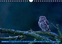 Wildes NRW - Beeindruckende Tierwelt (Wandkalender 2019 DIN A4 quer) - Produktdetailbild 12