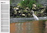 Wildes Wasser (Wandkalender 2019 DIN A2 quer) - Produktdetailbild 3