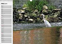 Wildes Wasser (Wandkalender 2019 DIN A3 quer) - Produktdetailbild 3