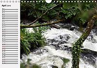 Wildes Wasser (Wandkalender 2019 DIN A4 quer) - Produktdetailbild 4