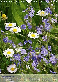 Wildflowers in Spring and Summer (Wall Calendar 2019 DIN A4 Portrait) - Produktdetailbild 9