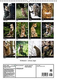 Wildkatzen - scheue Jäger (Wandkalender 2019 DIN A3 hoch) - Produktdetailbild 13