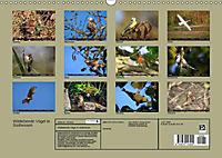 Wildlebende Vögel in Südhessen (Wandkalender 2019 DIN A3 quer) - Produktdetailbild 13
