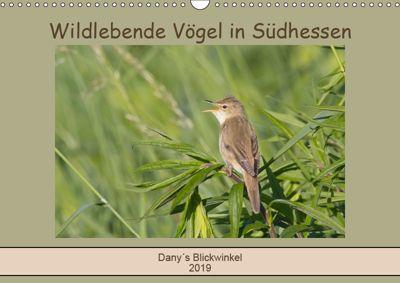 Wildlebende Vögel in Südhessen (Wandkalender 2019 DIN A3 quer), Daniela Buß