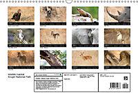 Wildlife Habitat Kruger National Park (Wall Calendar 2019 DIN A3 Landscape) - Produktdetailbild 1
