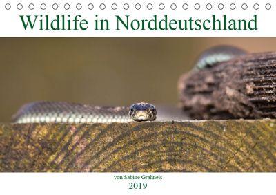 Wildlife in Norddeutschland (Tischkalender 2019 DIN A5 quer), Sabine Grahneis