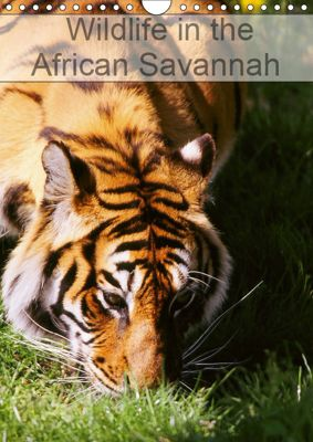 Wildlife in the African Savannah (Wall Calendar 2019 DIN A4 Portrait), Dominique Leroy