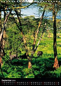 Wildlife in the African Savannah (Wall Calendar 2019 DIN A4 Portrait) - Produktdetailbild 9