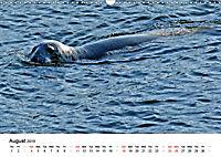 Wildlife of Europe 2019 (Wall Calendar 2019 DIN A3 Landscape) - Produktdetailbild 8