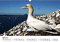 Wildlife of Europe 2019 (Wall Calendar 2019 DIN A3 Landscape) - Produktdetailbild 4