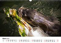 Wildlife of Europe 2019 (Wall Calendar 2019 DIN A3 Landscape) - Produktdetailbild 3