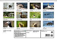 Wildlife of Europe 2019 (Wall Calendar 2019 DIN A3 Landscape) - Produktdetailbild 13