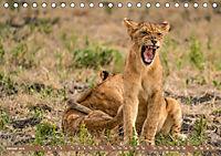 Wildlife Sambia (Tischkalender 2019 DIN A5 quer) - Produktdetailbild 1