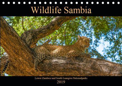 Wildlife Sambia (Tischkalender 2019 DIN A5 quer), Photo4emotion.com