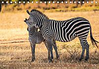 Wildlife Sambia (Tischkalender 2019 DIN A5 quer) - Produktdetailbild 4
