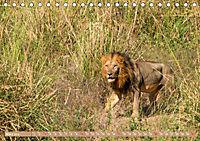 Wildlife Sambia (Tischkalender 2019 DIN A5 quer) - Produktdetailbild 3