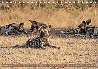 Wildlife Sambia (Tischkalender 2019 DIN A5 quer) - Produktdetailbild 10