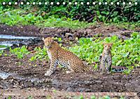 Wildlife Sambia (Tischkalender 2019 DIN A5 quer) - Produktdetailbild 9