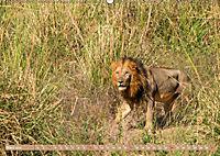 Wildlife Sambia (Wandkalender 2019 DIN A2 quer) - Produktdetailbild 3