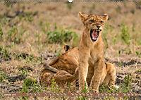 Wildlife Sambia (Wandkalender 2019 DIN A2 quer) - Produktdetailbild 1