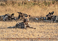 Wildlife Sambia (Wandkalender 2019 DIN A2 quer) - Produktdetailbild 10