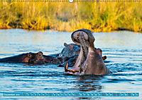 Wildlife Sambia (Wandkalender 2019 DIN A2 quer) - Produktdetailbild 12