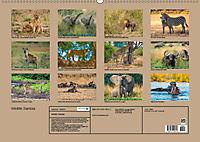 Wildlife Sambia (Wandkalender 2019 DIN A2 quer) - Produktdetailbild 13