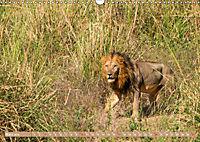 Wildlife Sambia (Wandkalender 2019 DIN A3 quer) - Produktdetailbild 3