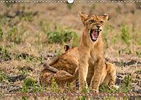 Wildlife Sambia (Wandkalender 2019 DIN A3 quer) - Produktdetailbild 1