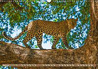 Wildlife Sambia (Wandkalender 2019 DIN A3 quer) - Produktdetailbild 6