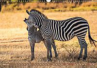 Wildlife Sambia (Wandkalender 2019 DIN A3 quer) - Produktdetailbild 4
