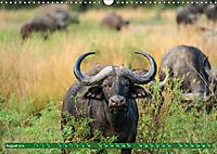 Wildlife Sambia (Wandkalender 2019 DIN A3 quer) - Produktdetailbild 8