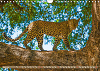 Wildlife Sambia (Wandkalender 2019 DIN A4 quer) - Produktdetailbild 6
