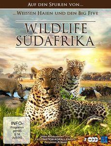 Wildlife Südafrika, N, A