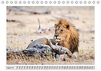 Wildlife - Tiere in Namibia (Tischkalender 2019 DIN A5 quer) - Produktdetailbild 2