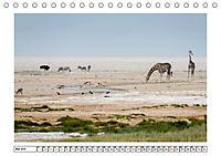 Wildlife - Tiere in Namibia (Tischkalender 2019 DIN A5 quer) - Produktdetailbild 3