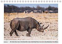 Wildlife - Tiere in Namibia (Tischkalender 2019 DIN A5 quer) - Produktdetailbild 13