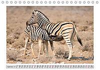 Wildlife - Tiere in Namibia (Tischkalender 2019 DIN A5 quer) - Produktdetailbild 9