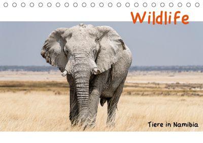 Wildlife - Tiere in Namibia (Tischkalender 2019 DIN A5 quer), Matthias Kunert