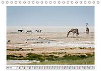 Wildlife - Tiere in Namibia (Tischkalender 2019 DIN A5 quer) - Produktdetailbild 5