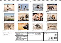 Wildlife - Tiere in Namibia (Wandkalender 2019 DIN A3 quer) - Produktdetailbild 13