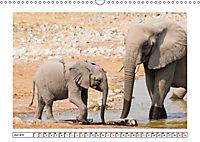 Wildlife - Tiere in Namibia (Wandkalender 2019 DIN A3 quer) - Produktdetailbild 6