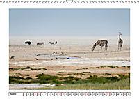 Wildlife - Tiere in Namibia (Wandkalender 2019 DIN A3 quer) - Produktdetailbild 5